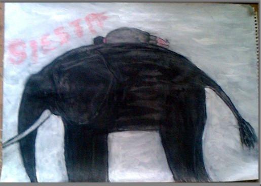 Siesta (sold)