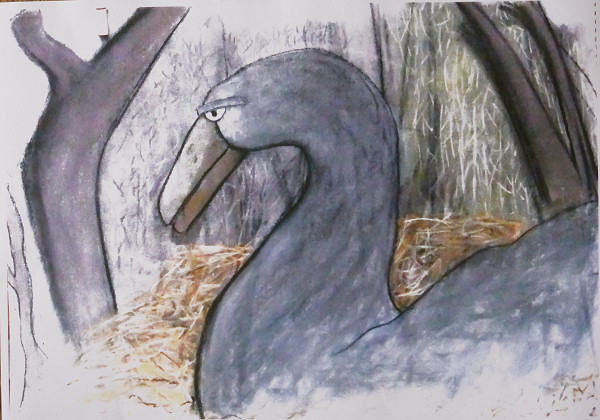 Large Bird Nesting